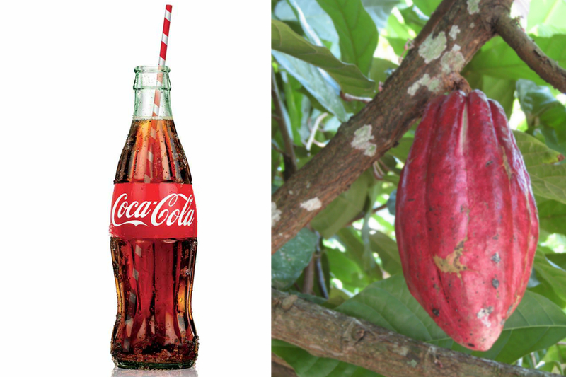 the history of coca cola Each day, benzinga takes a look back at a notable market-related moment that  occurred on this date what happened on this day 33 years.